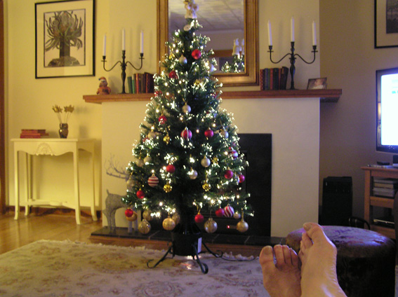 Another gratuitous shot of our Christmas tree, taken last night. You'll notice Nanna's toenails could do with a trim.